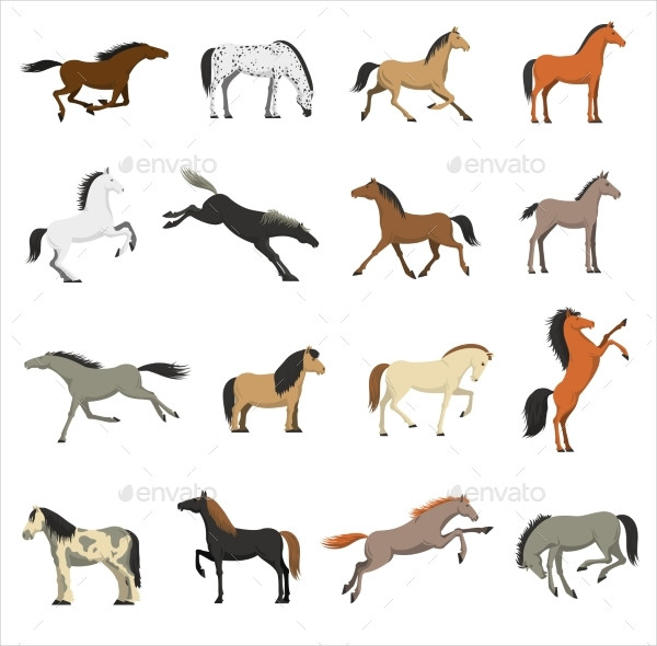 Best Horse Icon Collection