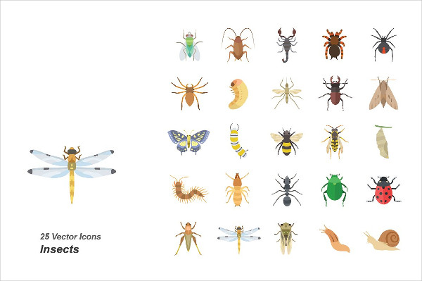 Insects Color Vector Icons