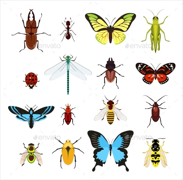 Insects Colored Decorative Icons