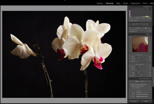 Lightroom RAW Image Processing settings
