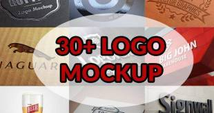 30 Best Logo Mockup PSD Template Free Download