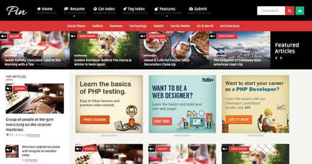 Pin = Pinterest Style wordpress themes
