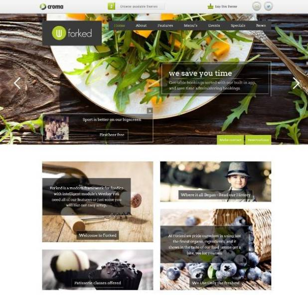 Forked wordpress themes