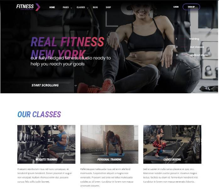 WordPress Theme for Gyms
