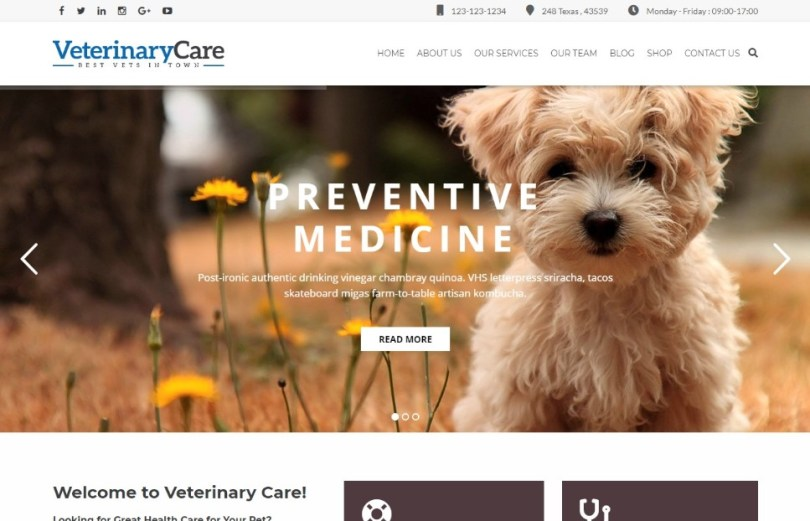 Vet Care - Pet Care & Veterinary WordPress Theme