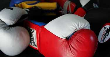 Best Boxing Glove Reviews