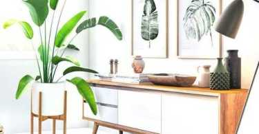 Best Plant Stands Reviews
