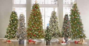 Best Christmas Tree For Apartment