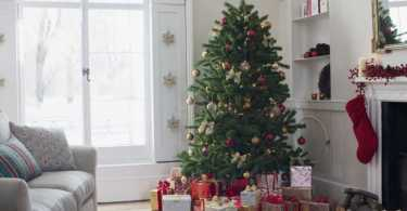 Best Christmas Tree For Small Spaces