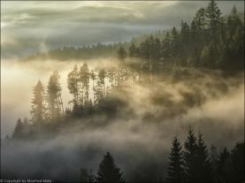 Morgennebel in der Steiermark