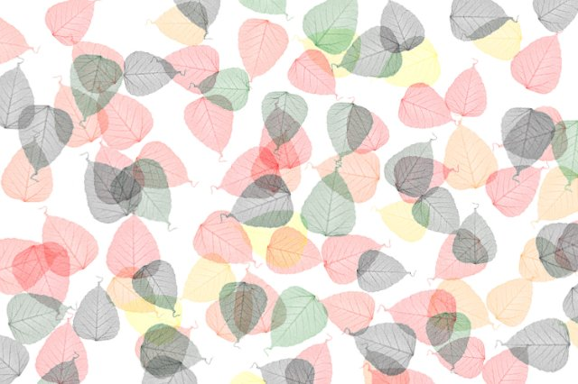 Fall Wallpapes Autumn Leaf Backdrop White Free Backgrounds And Textures