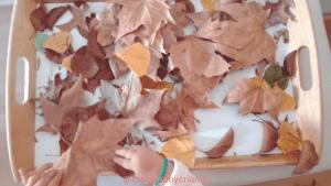 Bandeja sensorial Hojas otoño
