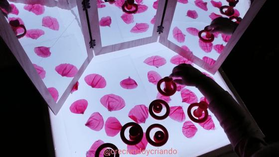 petalos y espejos mesa de luz1