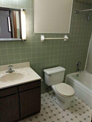 IMG_20180921_113857 18 Unit Apartment Building For Sale 13046-13050 S Wood St Blue Island IL 60406