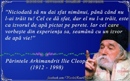 Parintele Cleopa Ilie - Sfaturi duhovnicesti