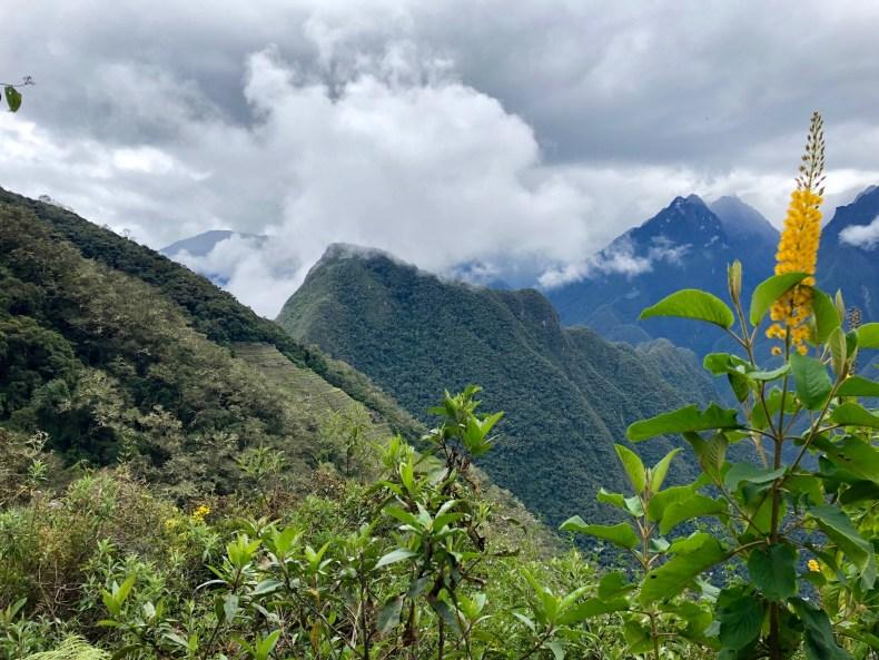 View of Intipata