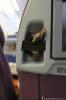 Storage LATAM 767-300 economy