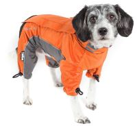 Winter Coats for Dogs: How to Tell if Your Dog Needs to