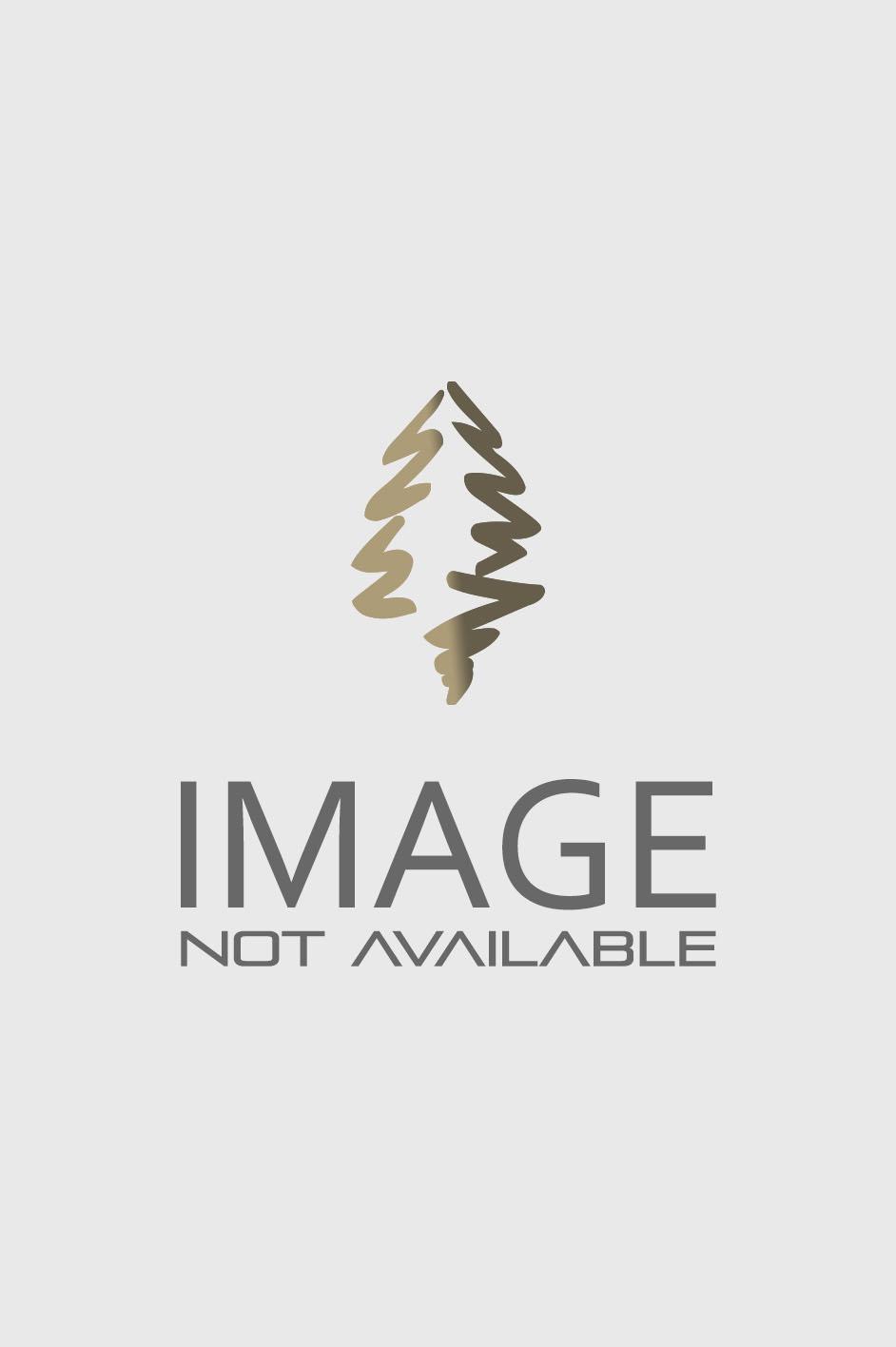 MAPLE BLAIR SILVER For Sale in Boulder Colorado