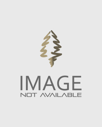 MAPLE ARMSTRONG COLUMNAR RED For Sale in Boulder Colorado