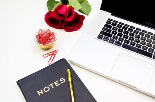 choisir la bonne niche pour son blog