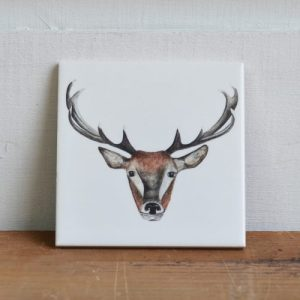 Countryside Animals Coasters