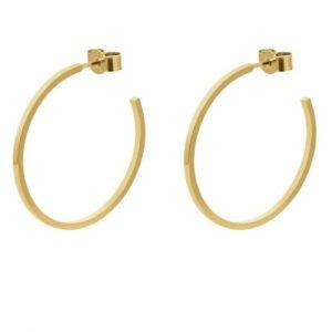Large  Hoop Earrings  Gold
