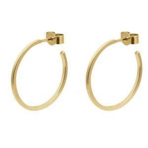 Medium  Hoop Earrings  Gold