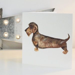 Wire Haired Dachshund Greetings Card