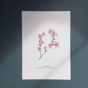 Blossom A5 Print - CHMP001 A5 Blossom 500x500