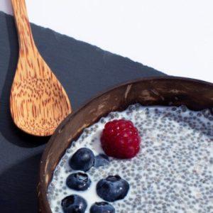 Coconut Wood Spoon