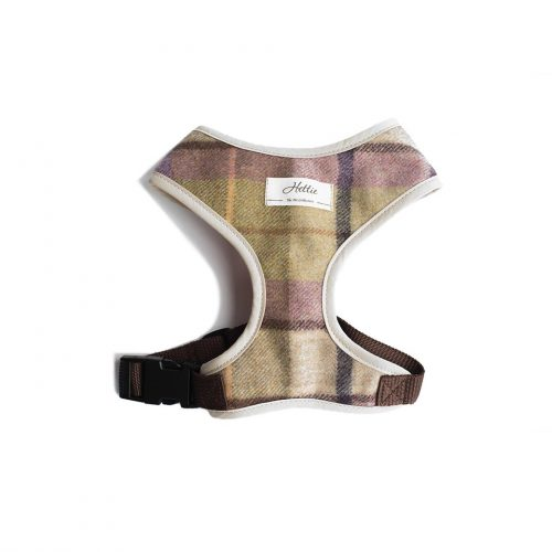 Scooby Dog Harness – Gargrave Lilac