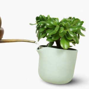 Natural Balance Mint Green - C12 FRONT COLOR4 middle page natural balance flowerpot 2016 2 scaled 1 500x500