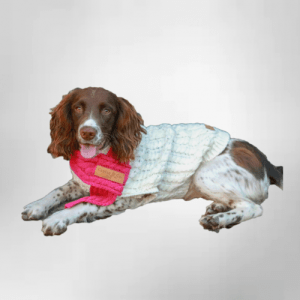 Cableknit Dog Jumper & Scarf Set – Oatmeal