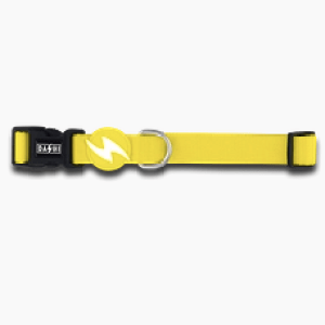SOLID YELLOW COLLAR