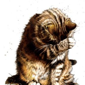 Small Fry The Tabby Cat Art Print