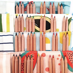 Pencil Case Small Variety Pack of 12 - Schermata 2020 06 30 alle 16.59.29