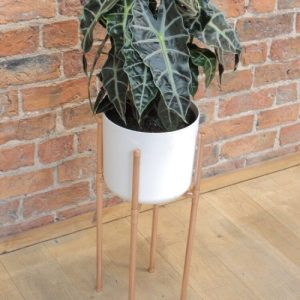 Small plant stand (for 14cm pot) - image asset 13 500x500