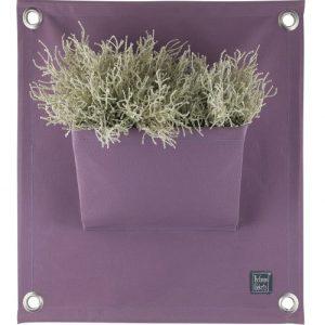 The Green Pockets® AMMA1 A17 Lavender - AMMA A17 Lavender  500x500