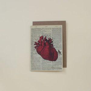 Anatomical Heart Dictionary Art Card (WAC20513)