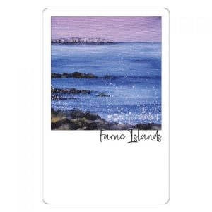 Farne Islands Magnet