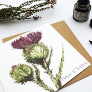 Scottish Thistle Flower of Scotland Card (pack of 6 cards) - card thistle 1024x1024@2x 500x500
