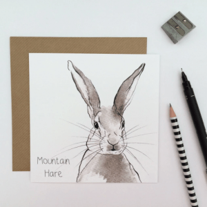 Mountain Hare Card (pack of 6 cards) - crd Mountain Hare 500x500