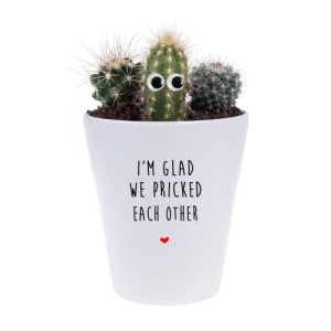 I'm Glad We Pricked Each Other House Plant Pot - FINAL Im glad we pricked each other cactus with googly eyes 500x500