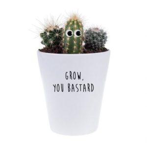 Grow You B*stard Plant Gift