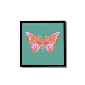 Moth – 21cm x 21cm square wall print