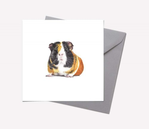 Furry Friends Collection: GUINEA PIG CARD – pack of 6