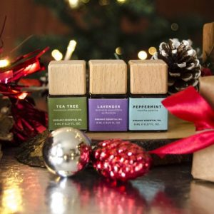 Starter Set - Essentials Collection - Holiday Gift Box - Christmas Gift - Bio Scents Starter Essentials Christmas 2020 Small 500x500