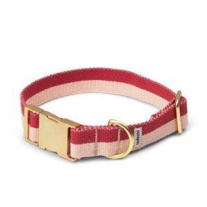 My Dog Collars (27cm- 46.5cm) - Tadazhi Halsbaand 03 500x500