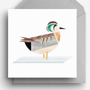 Baikal Duck Greetings Card - BaikalTeal card 500x500